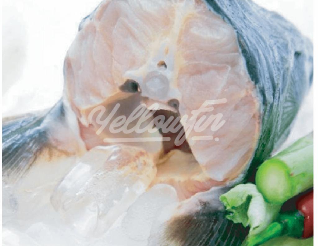 cá tầm Nga