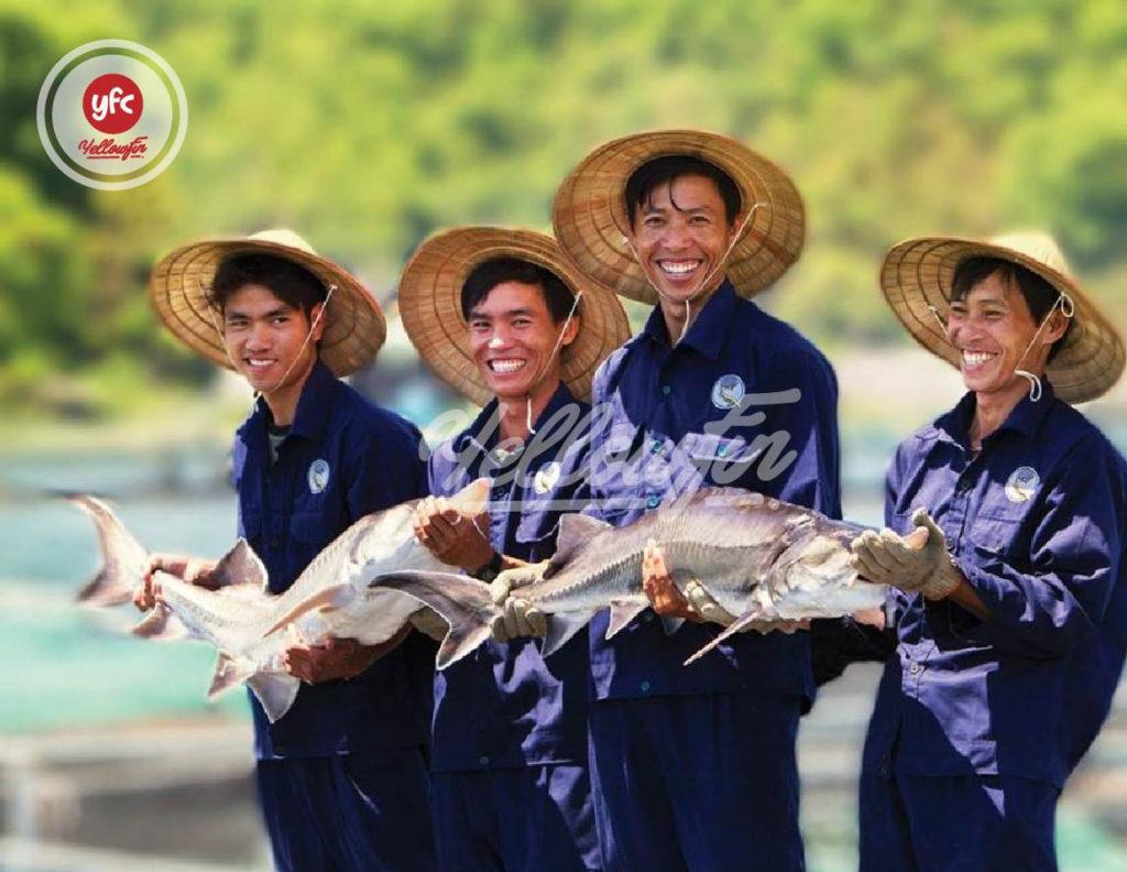 Địa chỉ bán cá tầm uy tín ở Hà Nội