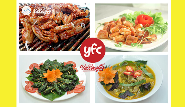 YFC _ Các món ngon từ Cá Ninja / Cá mút đá