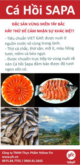 Giải cứu Cá hồi sapa Vinmart yfc